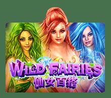 รีวิว Wild Fairies